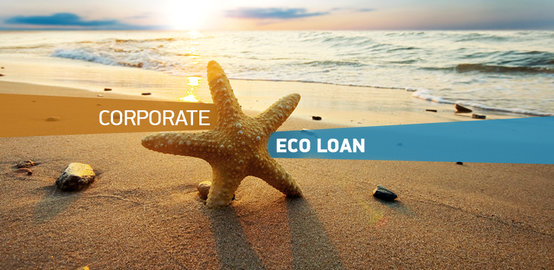 Corporate Eco Loan